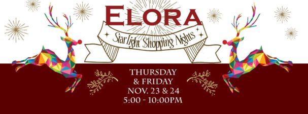 Starlight Shopping Elora 2017