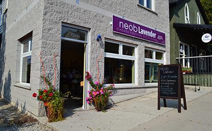 Neob Lavender Storefront